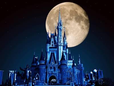 Cinderella Castle And Moon Passporter Photos