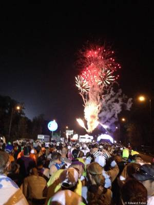 The 2014 Disney World Marathon - Start Corral