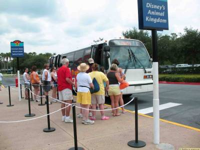 Photo illustrating <font size=1>All-Star Music - Bus Queue