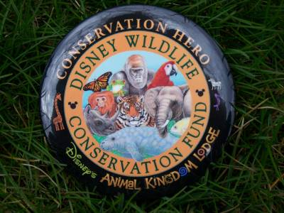Disney Worldwide Conservation pin