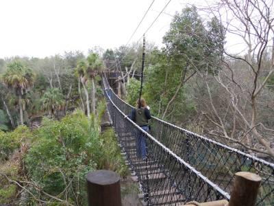 Photo illustrating <font size=1>wild_animal_trek_bridge