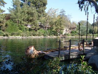 Disneyland - Tom Sawyer Island photo