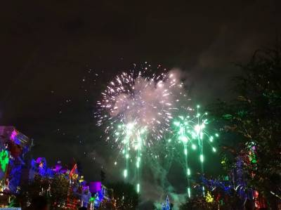 Photo illustrating <font size=1>Disneyland Park - Disneyland Forever fireworks