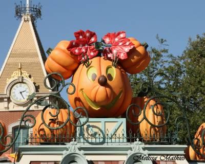 Photo illustrating <font size=1>Minnie Mouse Pumpkin Disneyland