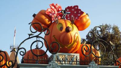 Photo illustrating <font size=1>Minnie Mouse Pumpkin