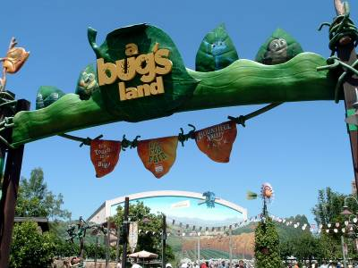 "Disney California Adventure - ""a bug's land"" photo"