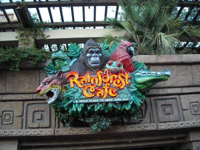 Disneyland Downtown Disney Rainforest Cafe