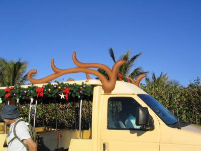 Castaway Cay - Tram at Christmas photo
