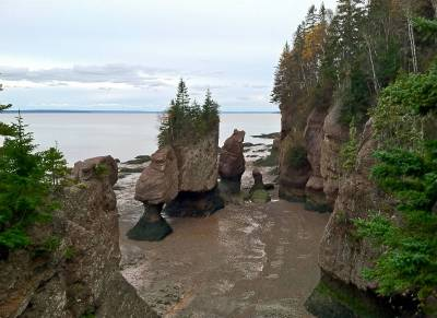 Hopewell Rocks at Low Tide photo