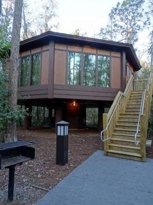 The Treehouse Villas at Disney's Saratoga Springs Resort