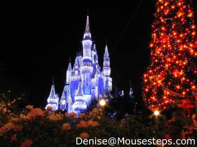 Photo illustrating <font size=1>Magic Kingdom - &quot;Iced&quot; Cinderella Castle for Christmas