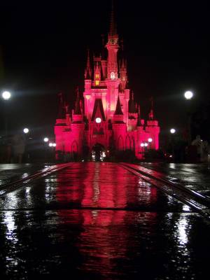 Magic Kingdom - The Castle after a day of rain