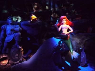 Photo illustrating <font size=1>Magic Kingdom - Ariel