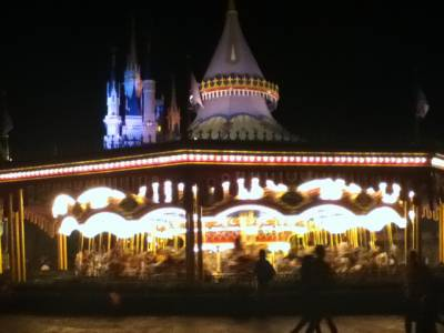 Adjusting Your Expectations for Your Walt Disney World Vacation - Part Two
