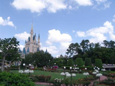 Photo illustrating Magic Kingdom - Castle and Rose Garden