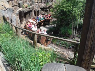 Photo illustrating <font size=1>Seven Dwarfs Mine Train