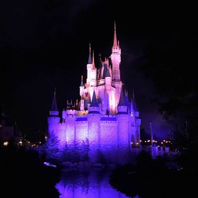 Photo illustrating <font size=1>Cinderella Castle at night