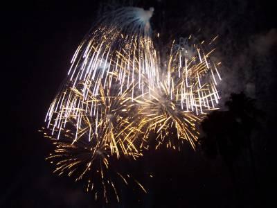 Photo illustrating <font size=1>Epcot - Illuminations Fireworks