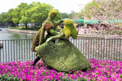 Photo illustrating WDW Epcot Flower & Garden Festival topiary Aurora (Sleeping Beauty) and