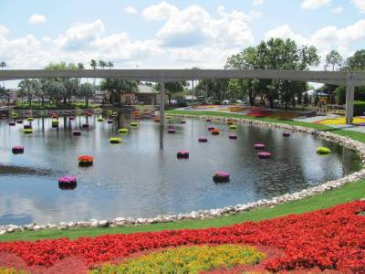Photo illustrating <font size=1>Flower and Garden Festival at Epcot