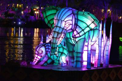 Photo illustrating Rivers of Light