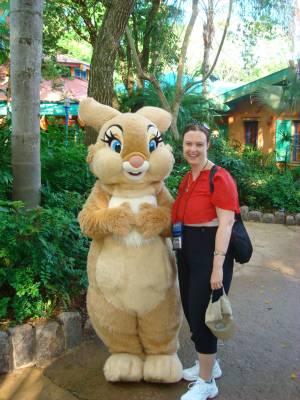 Photo illustrating <font size=1>Animal Kingdom - meeting Mrs. Bunny