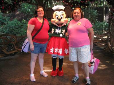 Photo illustrating Animal Kingdom - Minnie all decked out