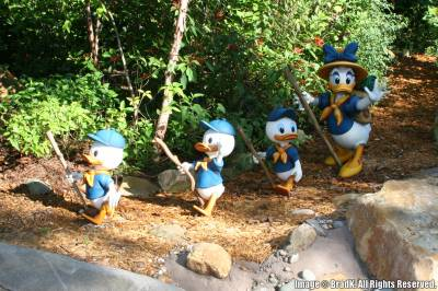 Photo illustrating Animal Kingdom - Daisy Duck with Huey, Dewey and Louie