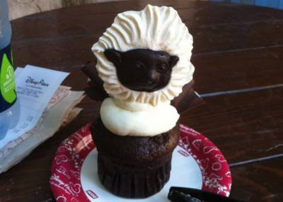 Photo illustrating Cotton Tail Tamarind Cupcake