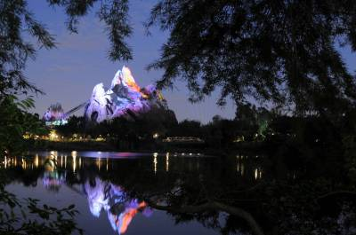 Photo illustrating <font size=1>Animal Kingdom  - Expedition Everest at Night