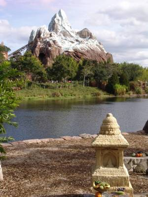 Animal Kingdom - Expedition Everest
