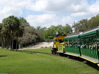 Photo illustrating Busch Gardens - Serengeti Express
