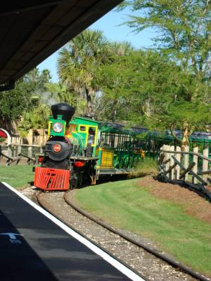 Busch gardens tampa serengeti railway passporter photos - Busch gardens tampa customer service ...