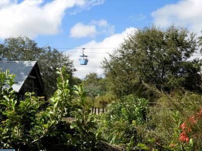 Busch Gardens Skyride Passporter Photos