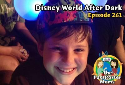 Photo illustrating Disney World After Dark