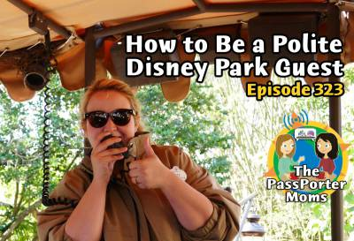 Photo illustrating How to Be a Polite Disney Park Guest