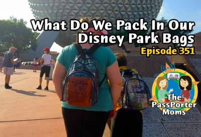 Photo illustrating What We Pack in Our Disney Park Bags