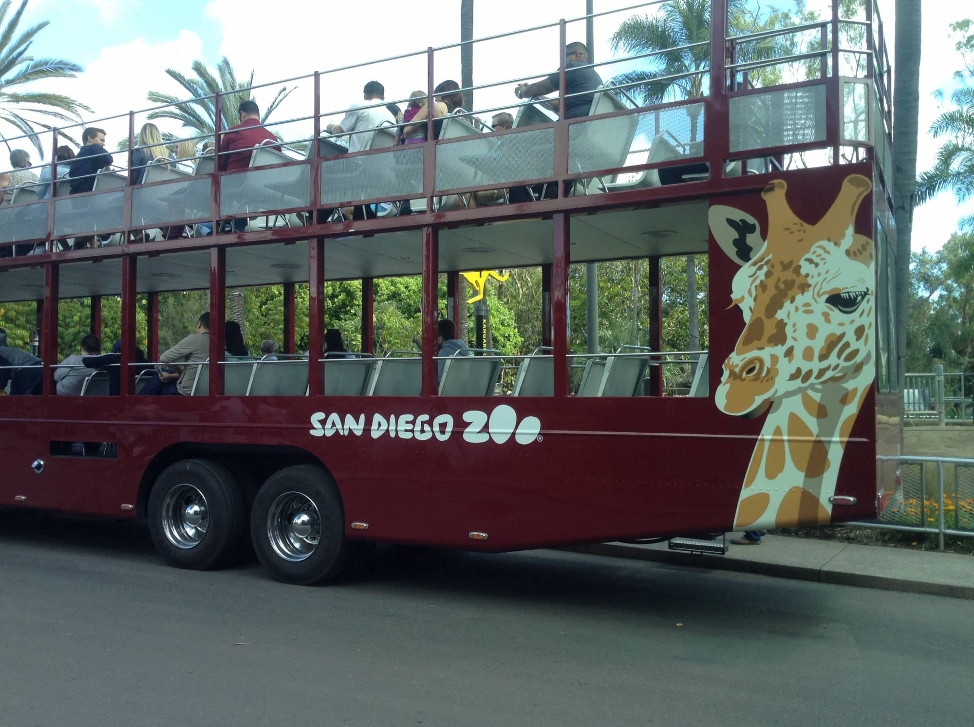 Explore the San Diego Zoo while in Southern California |PassPorter.com