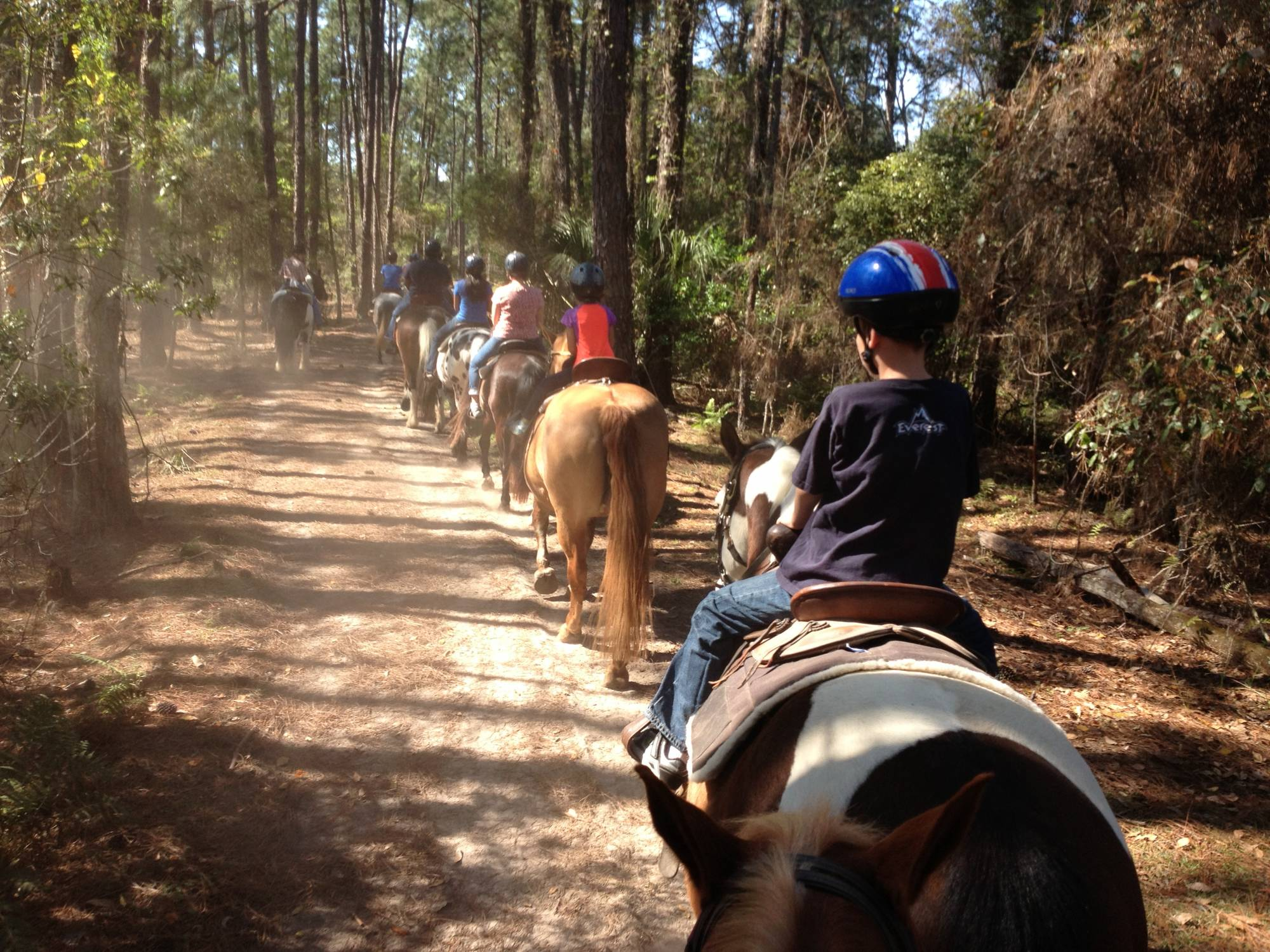 Explore Fort Wilderness from Horse-back with a Trail Ride |PassPorter.com