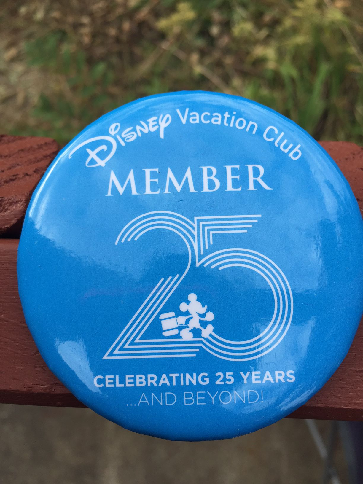 A review of the Disney Vacation Club 25th Anniversary Celrbation Safari Spectacular | PassPorter.com