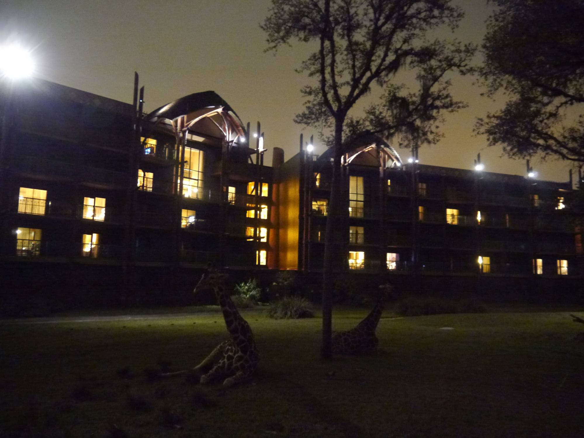 Guests of Disney's Animal Kingdom Lodge can experience a night-time safari | PassPorter.com