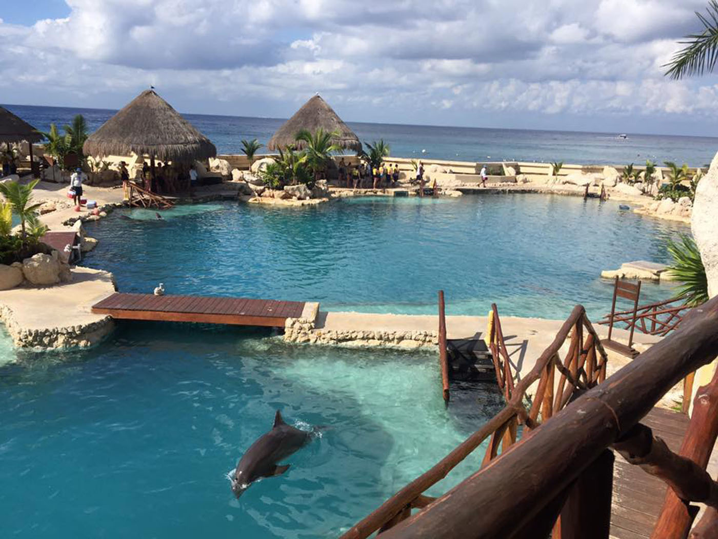 Learn more about the Port Adventures available in Cozumel, Mexico | PassPorter.com