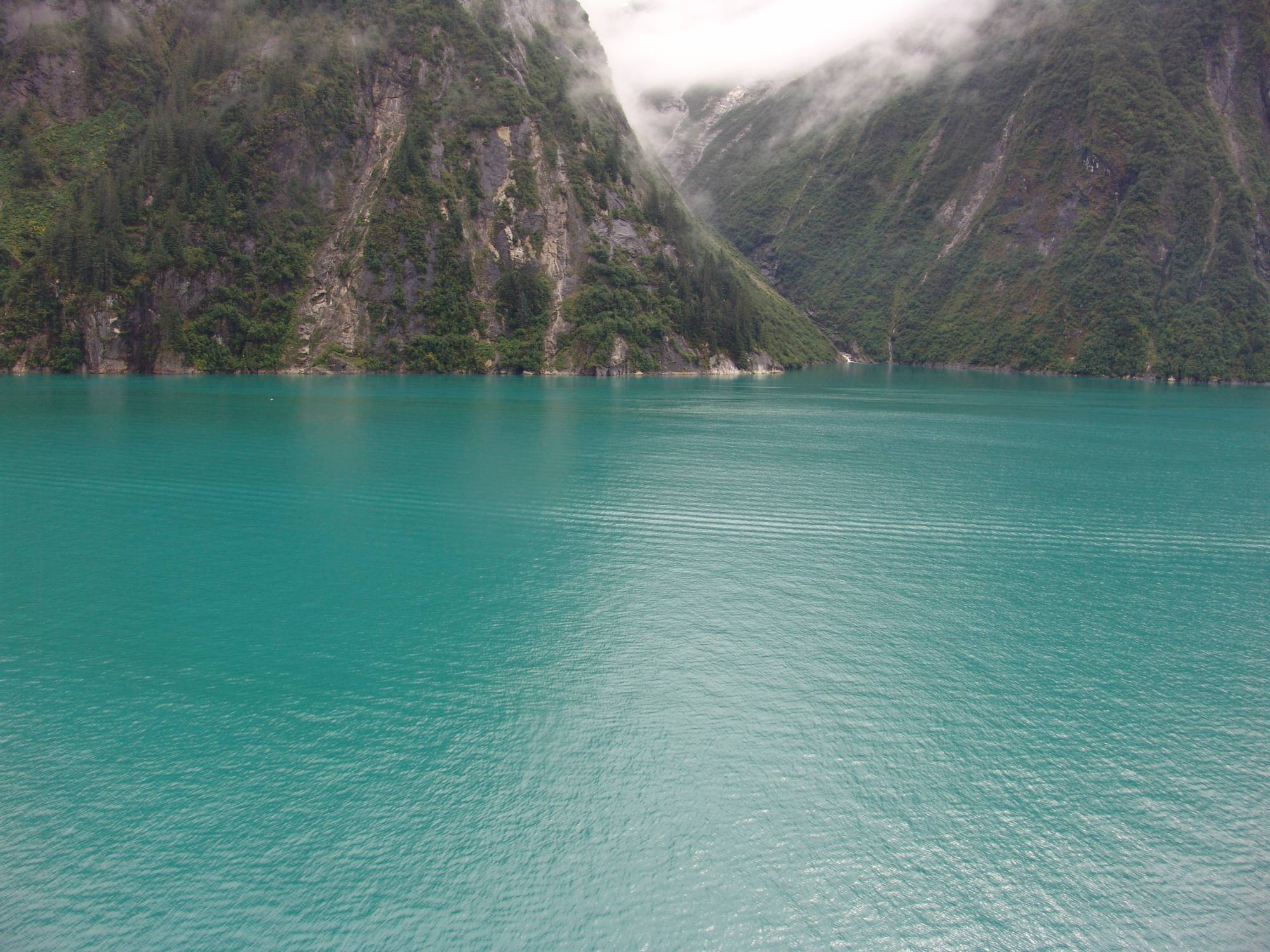 Alaska cruise - Tracy Arm Fjord photo