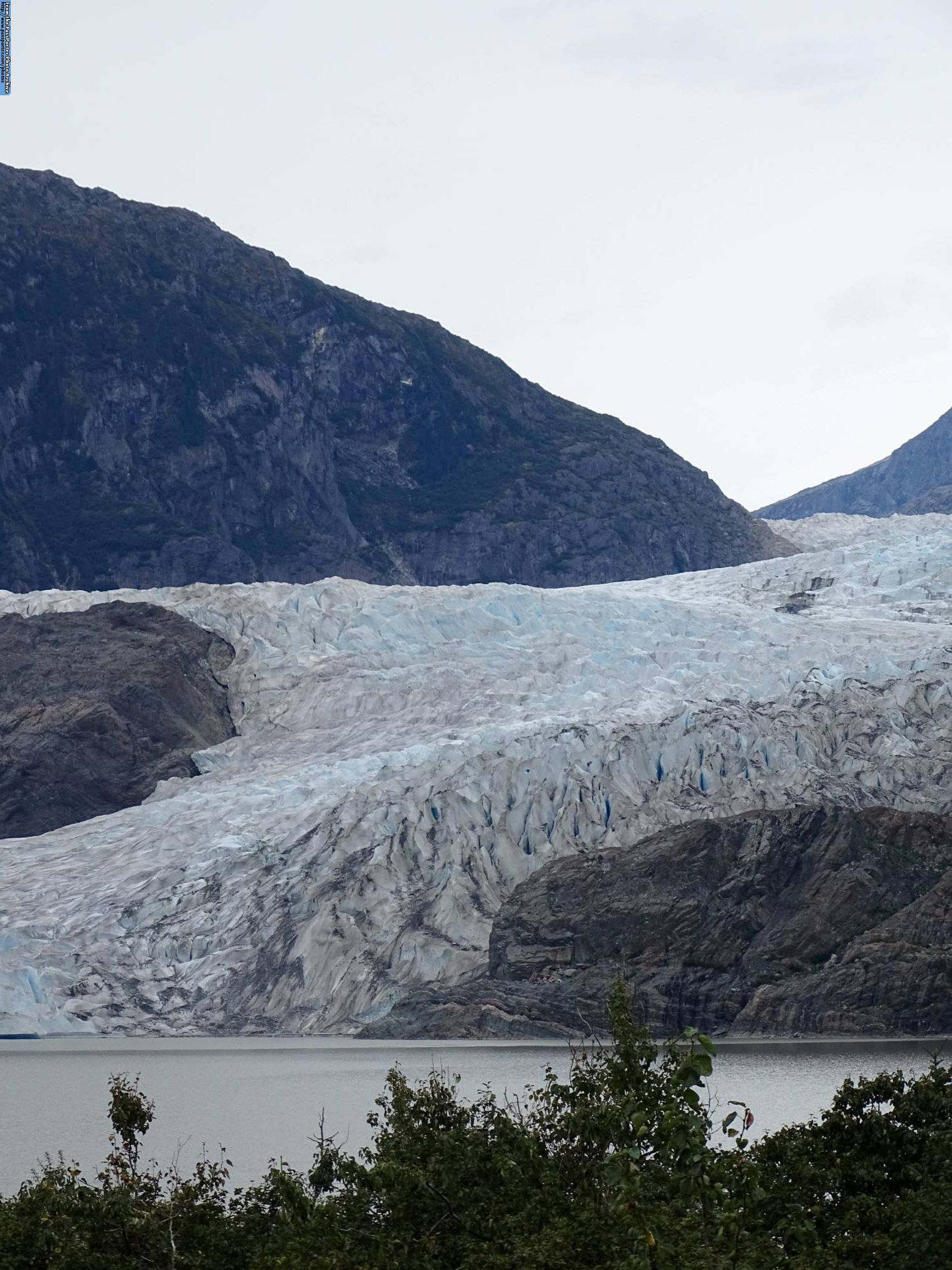 Enjoy the Whales and Glaciers Photo Safari in Juneau while on your Disney Cruise to Alaska |PassPorter.com