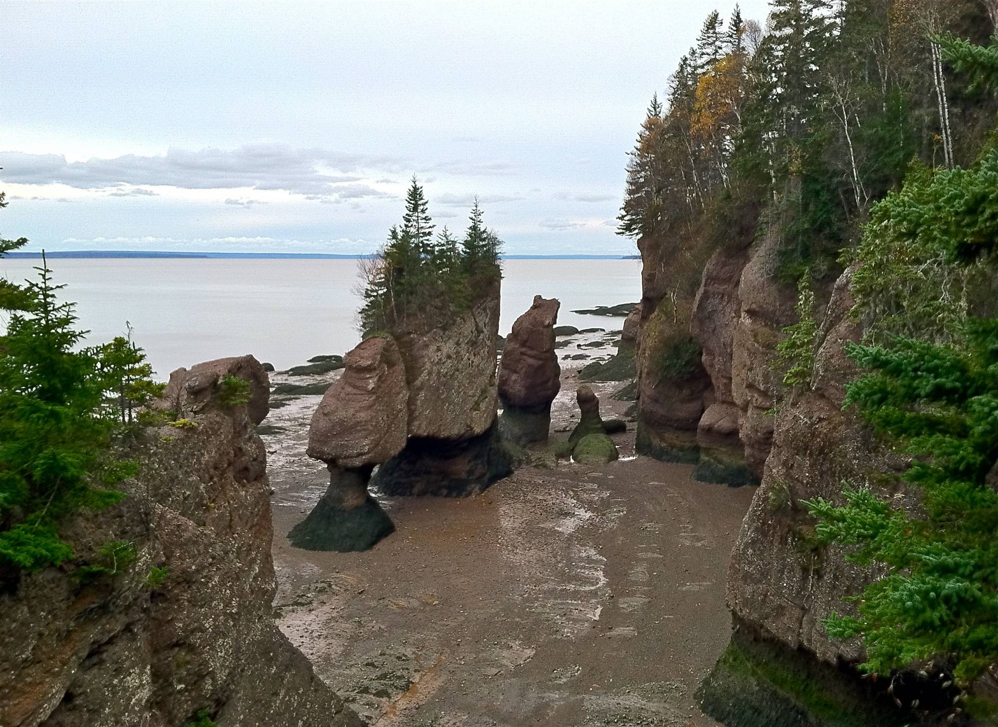 Exploring the Bay of Fundy's fabulous tides |PassPorter.com