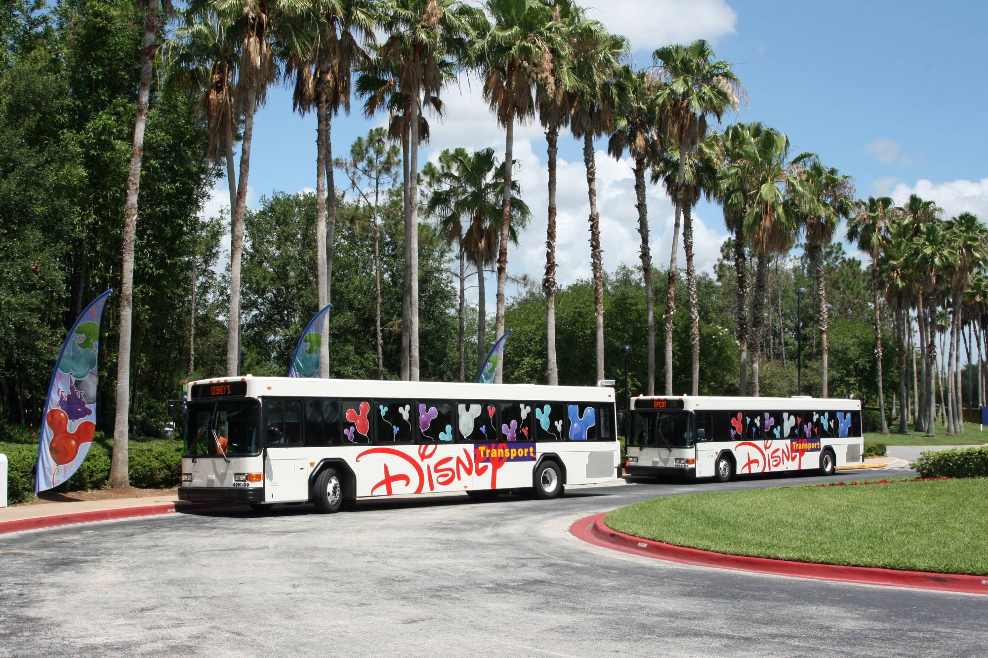 All Star Sports - Resort Buses photo