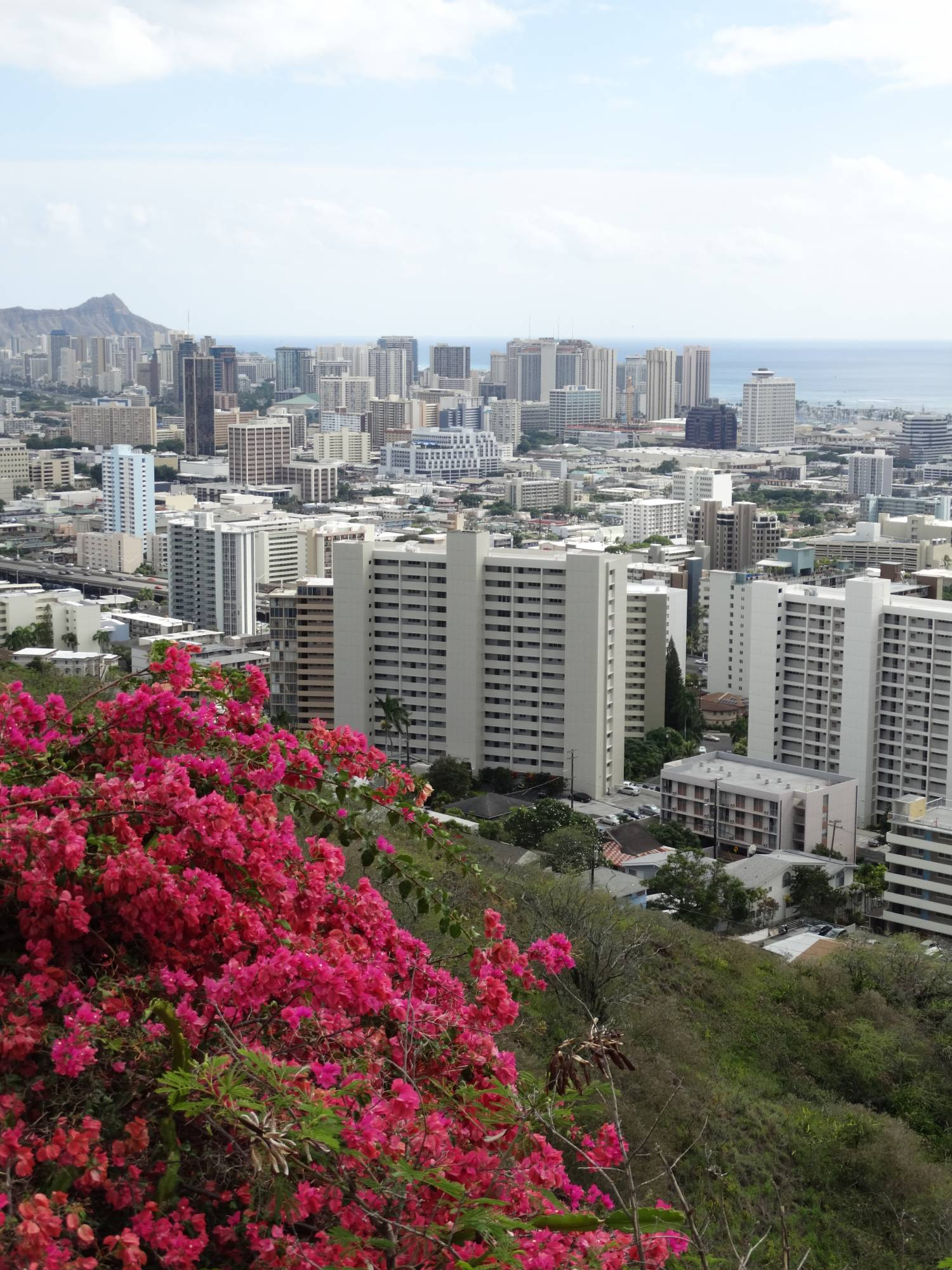 Explore the cities of Honolulu and Waikiki while visiting Aulani, a Disney Resort and Spa in Oahu |PassPorter.com