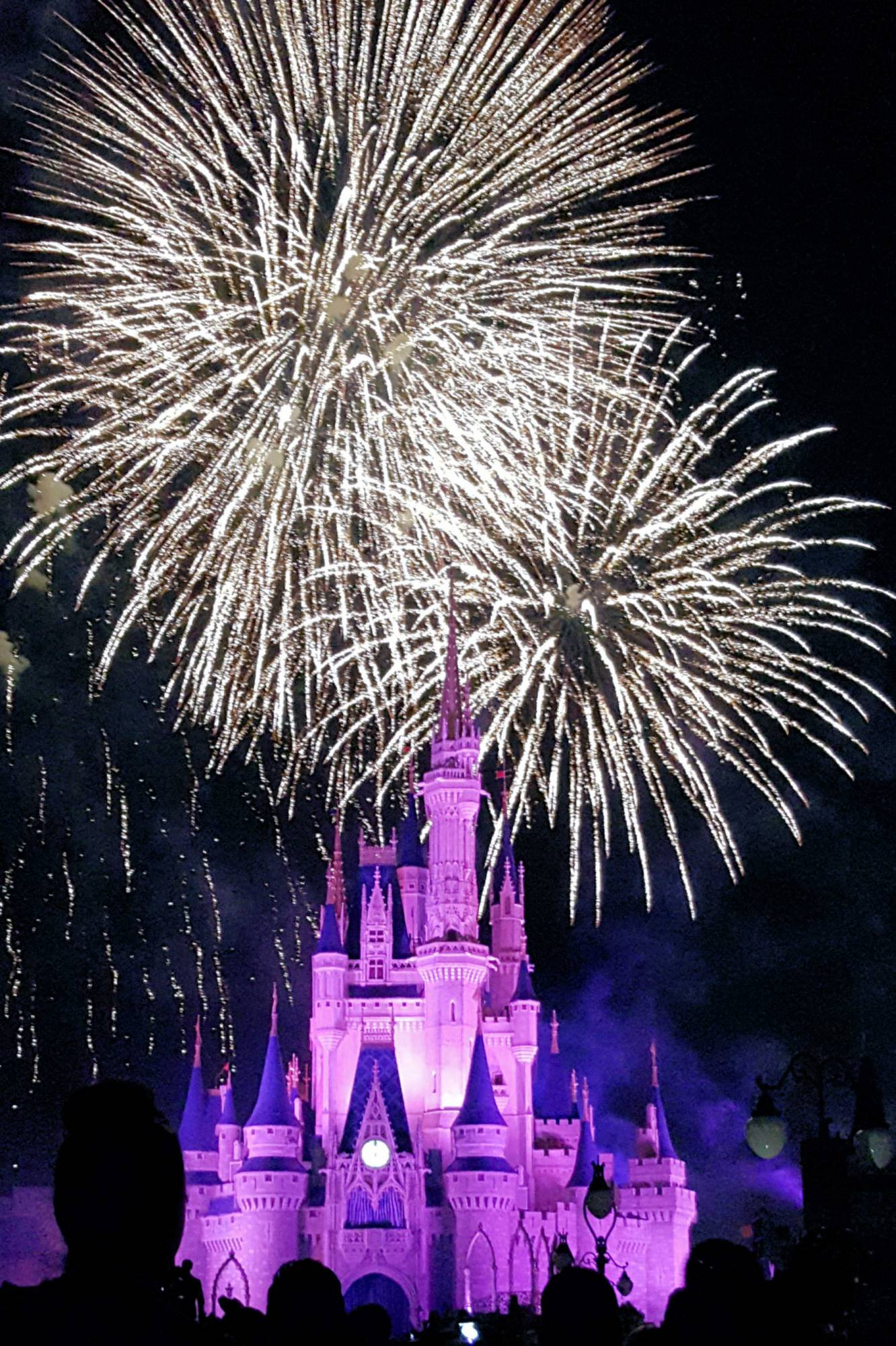Saying a fond farewell to 'Wishes' at the Magic Kingdom | PassPorter.com