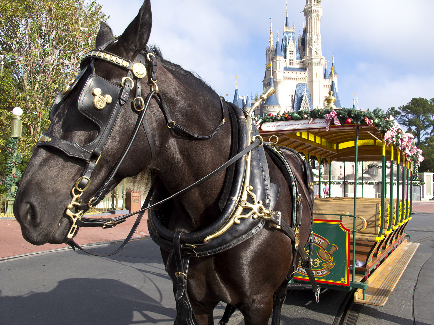 Explore the often overlooked attractions at the Magic Kingdom | PassPorter.com