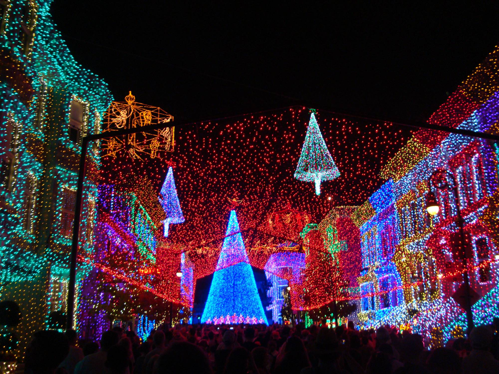 Discover the magic of Disney at the Holidays |PassPorter.com